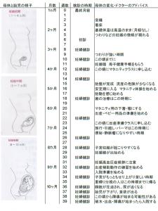 妊娠カレンダー | やさしいお産 楽しく子育て